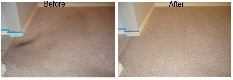 Dry Foam Carpet Cleaning 3