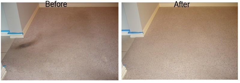 Dry Foam Carpet Cleaning 3